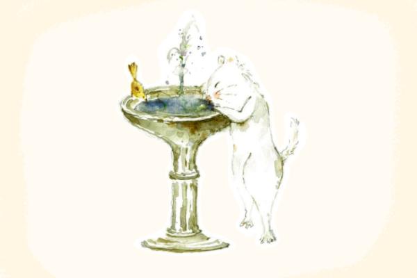 貓咪噴泉43
